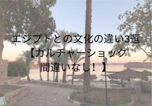 エジプトとの文化の違い3選 【カルチャーショック間違いなし!】