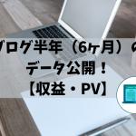 ブログ半年(6ヶ月)のデータ公開!【収益・PV】